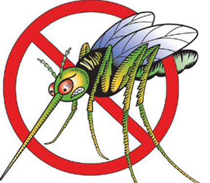 Help Control Mosquitoes in Washington County